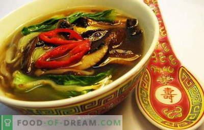 Zuppa cinese - sulla via della saggezza orientale. Ricette di zuppe cinesi con pasta, riso, frutti di mare, pomodori, funchoza e pesce