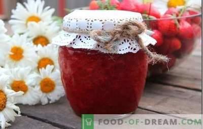 Dessert preferito - fragole con zucchero: ricette e segreti di preparazione. Fragole con zucchero - una ricetta per una deliziosa estate in lattina.