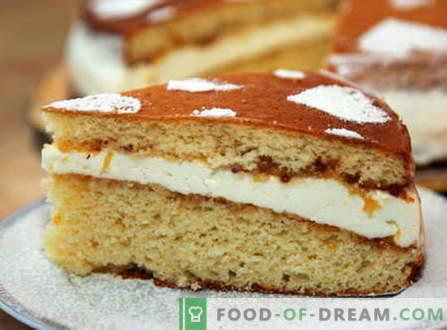 Pan di Spagna - le migliori ricette. Come cucinare correttamente e gustoso pan di Spagna.