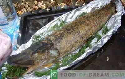Il luccio al forno in un foglio è un piatto reale. Come cucinare il luccio nel forno al cartoccio: con panna acida, funghi, verdure
