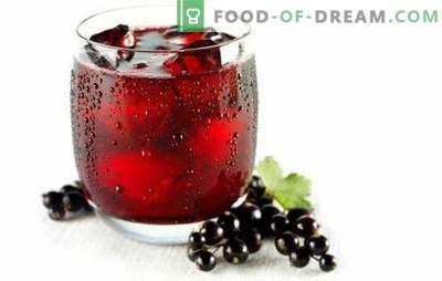Suc de coacaze - o armată întreagă de vitamine! Rețete de sucuri diferite de coacăze roșii și negre