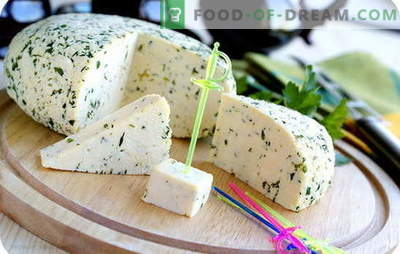 Cheese from sour cream in our own kitchen: three incentives for homemade cheese making. Recipes of the simplest and most popular types of cheese from sour cream