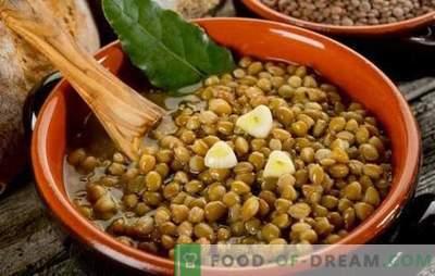 Il porridge di lenticchie è un piatto sano e inusuale per tutti i giorni. Varie ricette di porridge di lenticchie per la salute e la gioia