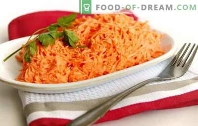 L'insalata di carote con maionese è semplice e nello stile della cucina coreana. Ricette insalate di carote veloci con maionese