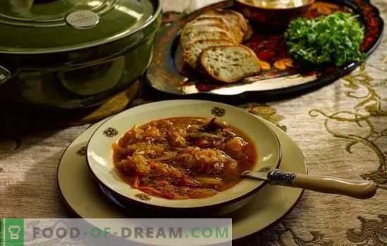 Zuppa giornaliera - cuocere secondo le antiche ricette! Tecnologia di cottura, ingredienti e diverse varianti di cavolo quotidiano
