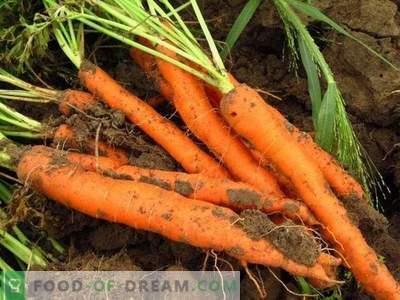 Propriétés utiles des carottes