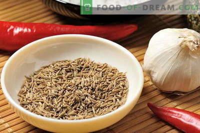 Zira - proprietà e uso in cucina. Ricette con Zira.