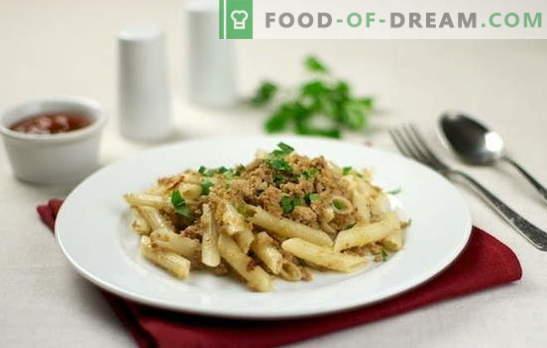 Pasta blu marino con carne macinata: è veloce e nutriente! Le 10 migliori ricette di pasta con carne macinata: maiale, pollo, collettivo