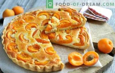 Crostata di albicocche semplice - chiunque può gestirlo! Cottura di torte albicocche estive: ricette semplici per tutti