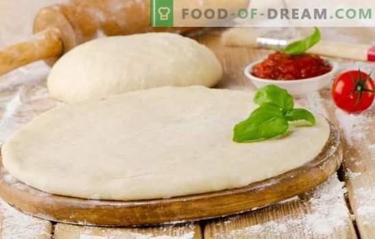 L'impasto della pizza con il latte è una base gustosa per un piatto gustoso. Cottura di una varietà di pasta per pizza con latte: lussureggiante, morbido, croccante