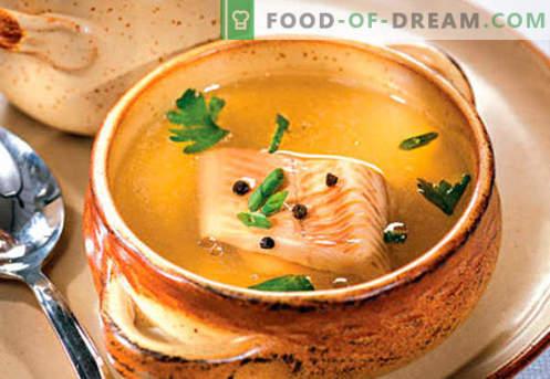 Brodo di pesce: le migliori ricette. Come cucinare correttamente e gustoso il brodo di pesce.