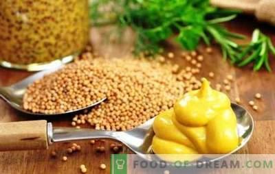 Come preparare la senape a casa: ricette semplici! Come rendere la polvere di senape gustosa e utile!