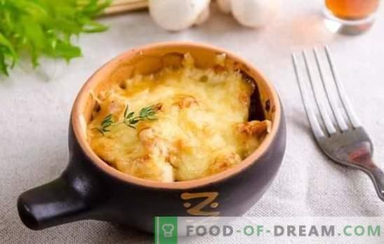 Amazing julienne: ricette passo-passo per il tuo piatto preferito. Julienne francese con pollo, funghi freschi e secchi