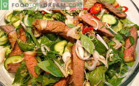 Vlees met komkommers - de beste recepten. Hoe goed en smakelijk vlees bereiden met komkommers.