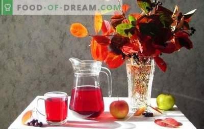 Composta di mele nere con mele per l'inverno - minimo di seccature, massimo di gusto. Cucinare composta di