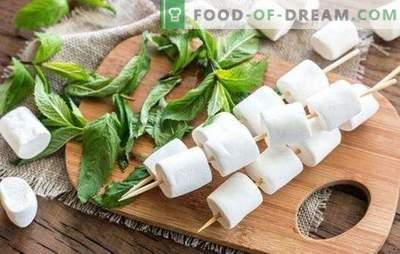 Pastiglia di mele - più fresca di qualsiasi caramella! Come cucinare la frutta candita a casa e i piatti con essa
