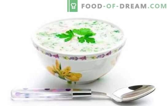 Best Okroshka? Ecco qui! Le ricette più gustose e semplici di okroshkas su panna acida, kvas, acqua minerale, kefir