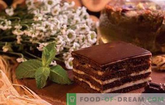 Torta Spartacus - ricette per la gioia del miele e del cioccolato! Tutti i segreti, trucchi, diverse opzioni e ricette della torta