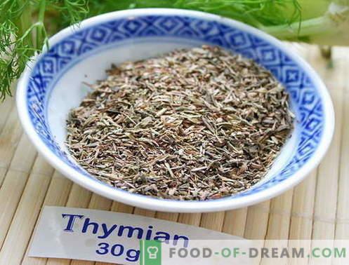 Timo - descrizione, proprietà, uso in cucina. Ricette i piatti con il timo.