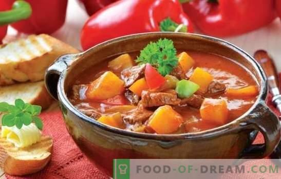 Zuppa di carne e patate: le ricette sono semplici e molto semplici. Minestre di patate e carne: magro, pollo, manzo, verdura