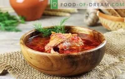 Borscht nel brodo di pollo: come scegliere la carne e le barbabietole, come cucinare il brodo? Ricette buone e diverse borscht in brodo di pollo