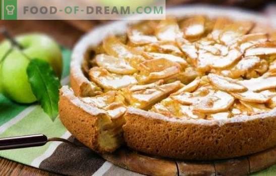 Charlotte dolce con panna acida e mele è una prelibatezza di tutta la famiglia. Come fare una charlotte con panna acida e mele dal pane secco