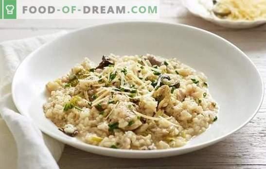 Risotto classico - un piatto popolare originario d'Italia. Ricette risotto classico con funghi, pollo, verdure e frutti di mare