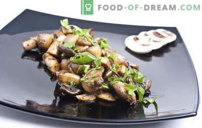 Receita para champignons fritos. Como fritar champignons: com ou sem cebola - preparação adequada, processamento e cozinhar