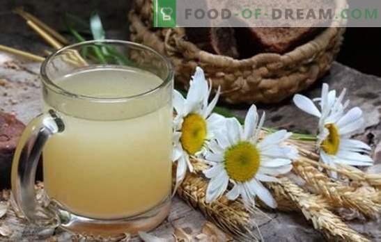 kvas farina d'avena - dà freschezza, vigore, riduce il peso! Kvas dall'avena a casa: i benefici e i danni al corpo