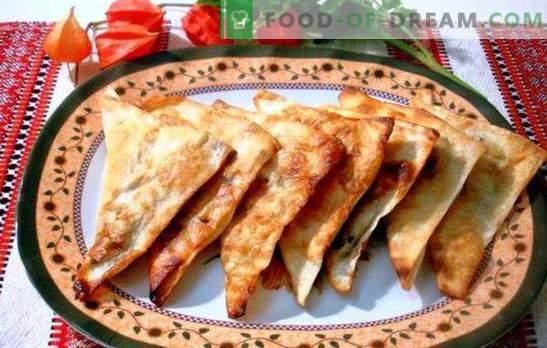 Chebureks da pita - pigro, ma così delizioso! Carne, formaggio e ripieni combinati per lavash chebureks