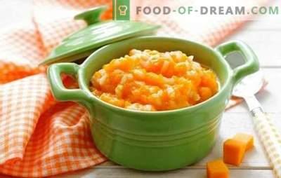 La zucca con il latte in un fornello lento è un piatto raro e sano. Come cucinare una zucca con il latte in una pentola a cottura lenta: un minimo di tempo, massimo beneficio