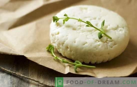 Come fare il formaggio di capra a casa: ricette semplici. Come preparare il formaggio di capra: raccomandazioni