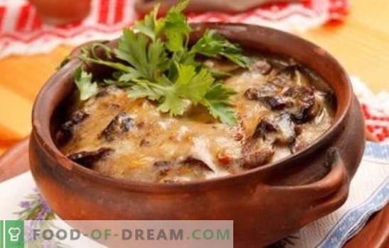 Patate con funghi in una pentola - per la vita quotidiana e le vacanze! Diverse ricette per patate con funghi in vaso