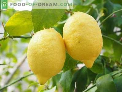 Limoni: vantaggio e danno