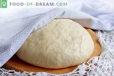 Pasta di lievito veloce