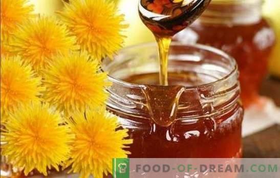 Marmellata di tarassaco: è gustoso? Come cucinare la marmellata di fiori di tarassaco