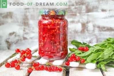 Ribes rosso, grattugiato con zucchero per l'inverno