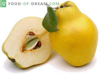 Cotogna - descrizione, proprietà utili, uso in cucina. Ricette con mele cotogne.